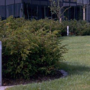 tuinverlichting 62 cm hoogte voor bedrijfsgebouw